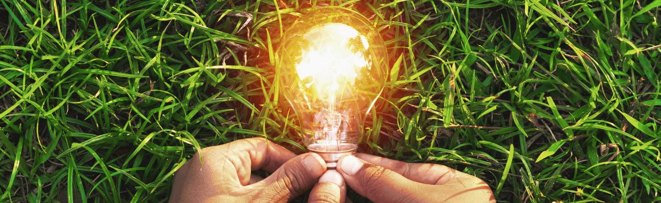 IT-BLOG-Sustainability-come-YEM-aiuta-nella-scelta-green-DETAIL