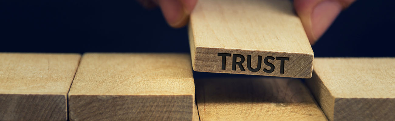 BLOG-IT-trust supplier-DETAIL